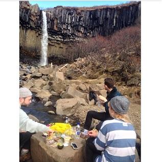 svartifoss picnic